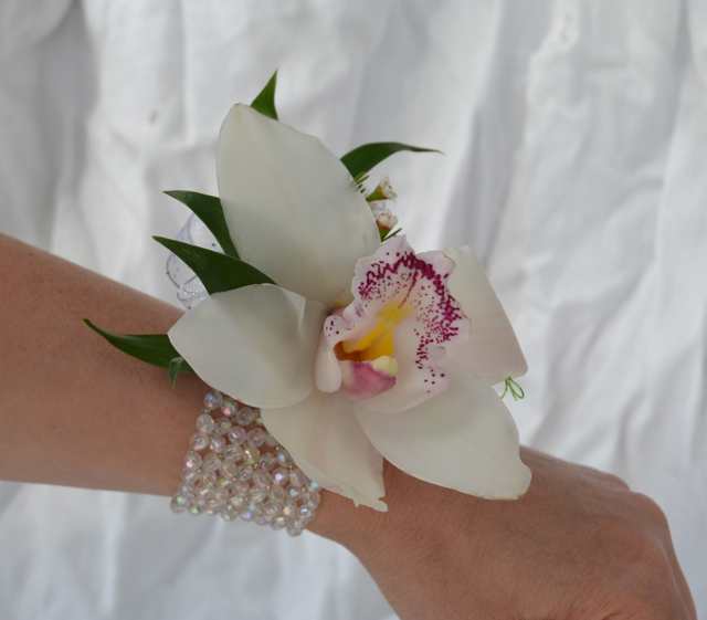 single cymbidium orchid corsage  danielson flowers, Beautiful flower