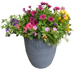 Blooming Patio Planter